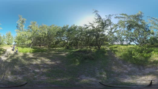 Thumbnail for 360 VR Family of Tourists Walking in Green Woods of Mauritius