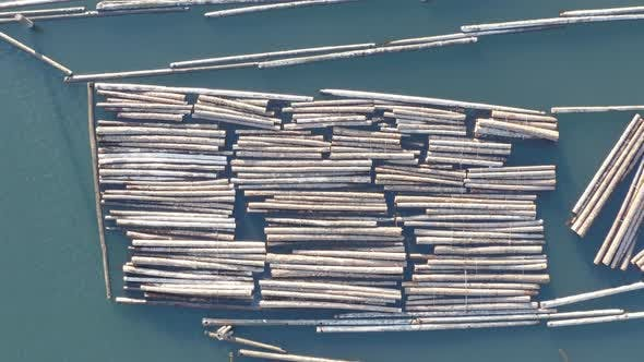 Cover Image for Top Down Shot Above Floating Logs In Water Mill Timber Rafting - Aerial View Flying In