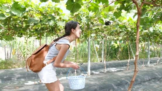 Thumbnail for Woman go to grape farm