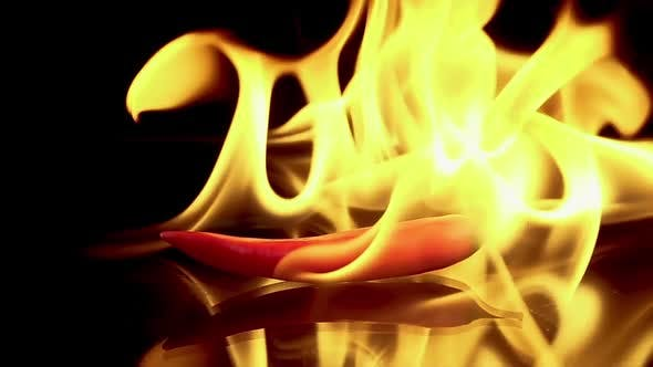 Hot Red Chili Pepper in Flames