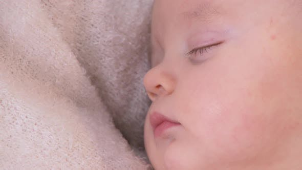 Thumbnail for Portrait of baby sleeping