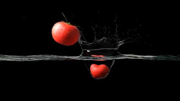 Thumbnail for Tomatos Water Splash