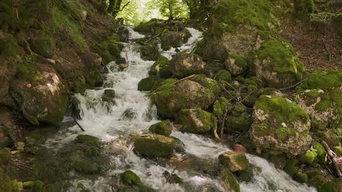 Waterfall with Mountain River in Montenegro