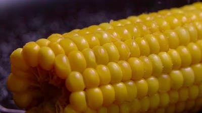 Cooked sweetcorn - homemade cooked corn