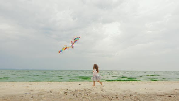 Thumbnail for Little Girl Playing with Kite on the Beach