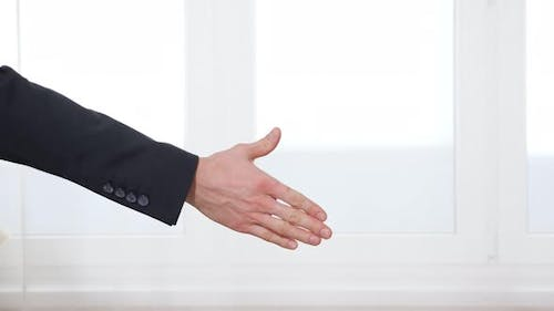 Man and Woman Seal Successful Deal with Handshake By Window