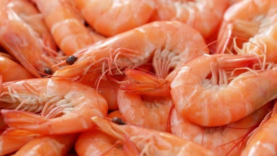 Thumbnail for Stack of fresh cooked shrimp