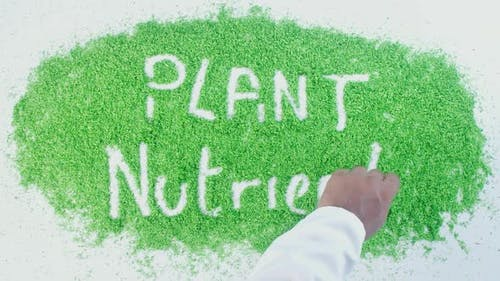 Green Writing   Plant Nutrients