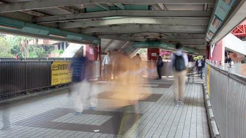 Crosswalk People Traffic Hong Kong