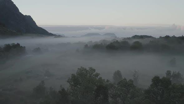 Thumbnail for Landscape In The Fog