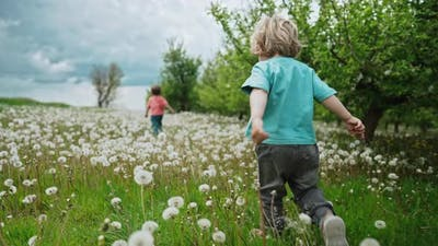 Funny Kids Runs Rests in Dandelions