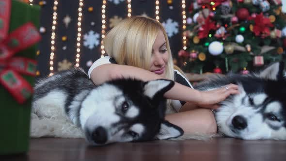 Thumbnail for Pretty Woman Lying on the Floor on the Background of the Christmas Tree and Stroking Two Lying Next