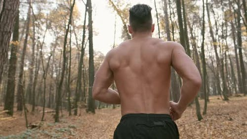 Athlete Jogging In The Forest