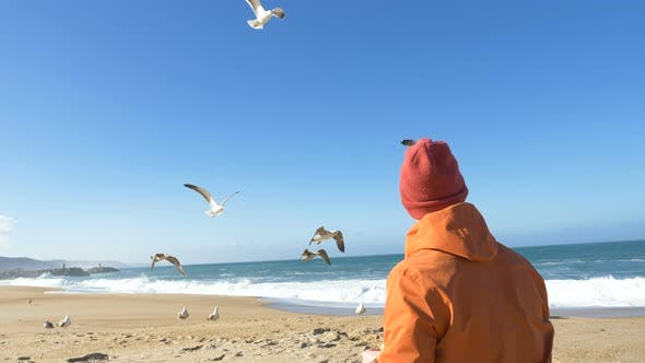 Thumbnail for Man Sits on Beach and Feeds White Seagulls Against Ocean
