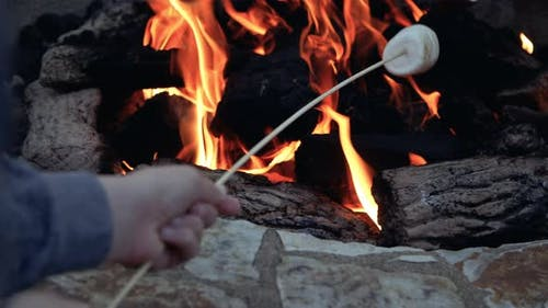Roasting Marshmellow In Fire Pit Flame For Smores