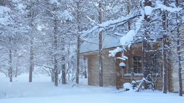 Thumbnail for Wooden House in the Forest and Snowfall