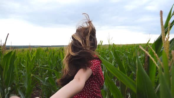 Thumbnail for Follow Me Shot of Young Woman in Red Dress Pull Her Boyfriend on Corn Field. Happy Girl Holding Male