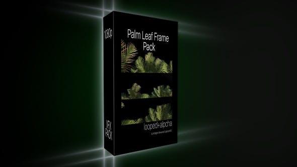 Palm Leaf Frame Pack