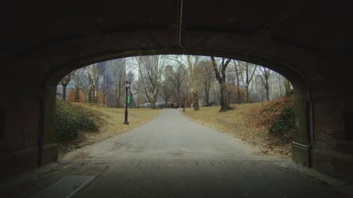 Passageway in Central Park