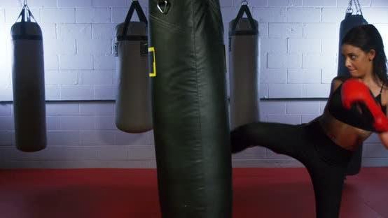 Thumbnail for Young Woman Kickboxing 05B