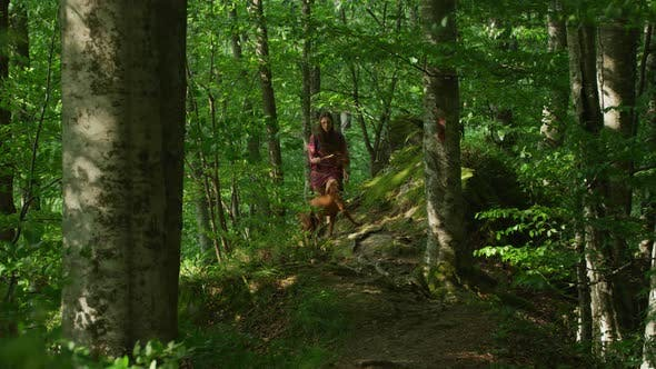 Thumbnail for Girl and dog walking in a forest