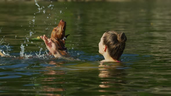 Thumbnail for Girl and dog playing in the water