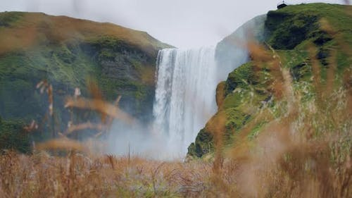 Iceland Skogafoss Waterfall with Defocused Foliage in Foreground