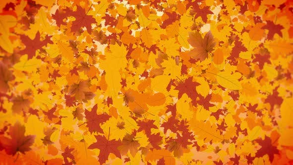 Thumbnail for Autumn Leaves Background