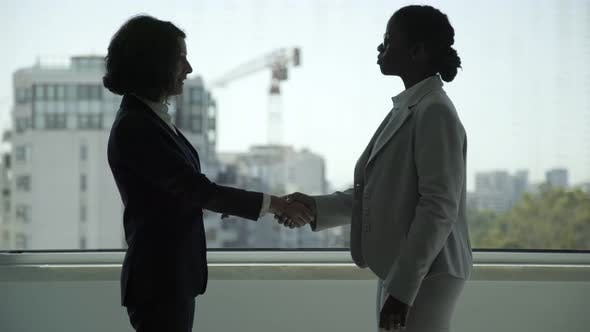 Thumbnail for Professional Businesswomen Shaking Hands
