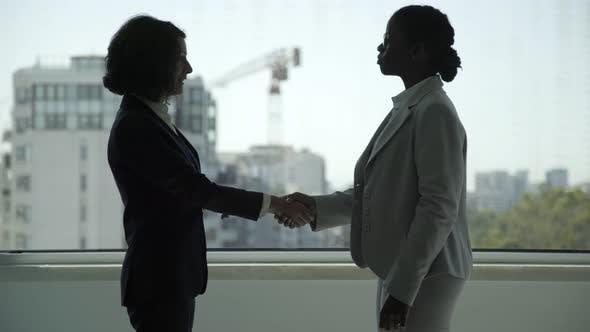Thumbnail for Professional Businesswomen Shaking Hands