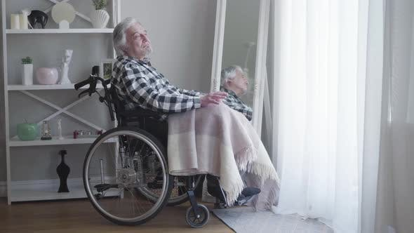 Cover Image for Side View of Mature Caucasian Grey-haired Man Sitting in Wheelchair and Thinking. Lonely Elderly Man