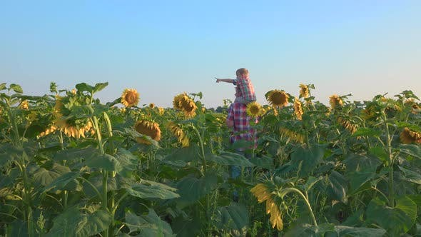 Thumbnail for Father and Son Walking in Field of Sunflowers