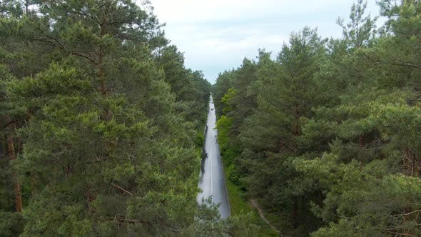 Thumbnail for Drone Raising Over Green Summer Forest with Narrow Road in the Middle. Aerial View of Picturesque