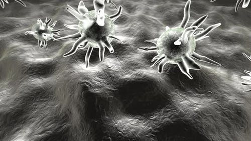 Microscopic view on Viruses infecting the human Body