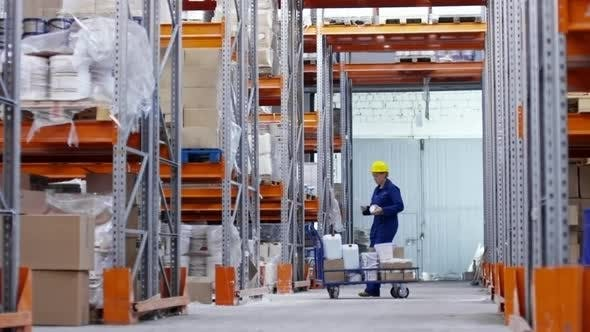 Thumbnail for Woman Working in Warehouse
