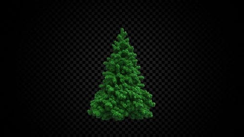 Christmas Tree Of Cubes