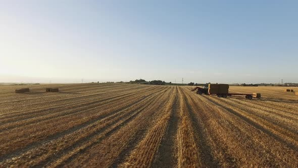 Thumbnail for Farming Tractor with Forklift Picking Up Dry Hay in a Large Field