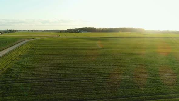 Thumbnail for Flight Over Green Farm Field