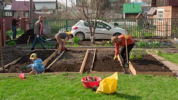 Thumbnail for Family in the Garden, Timelapse
