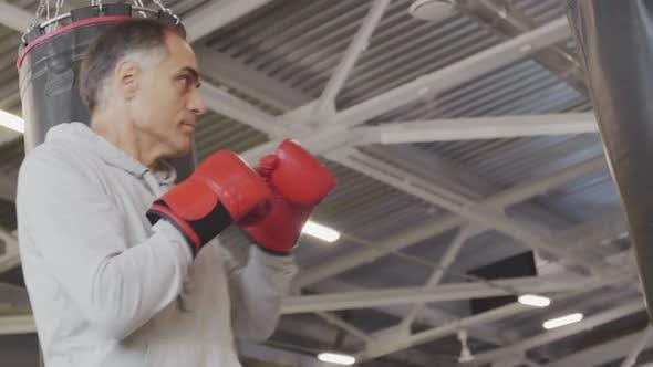 Senior Boxer on Training