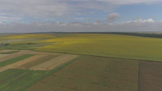 Luftbild landwirtschaftlicher Flächen