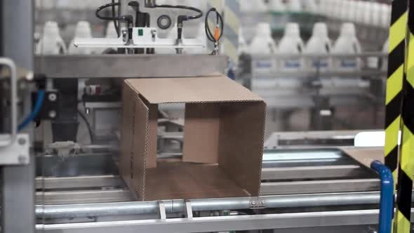 Thumbnail for Cardboard Boxes On Conveyor Belt In Factory