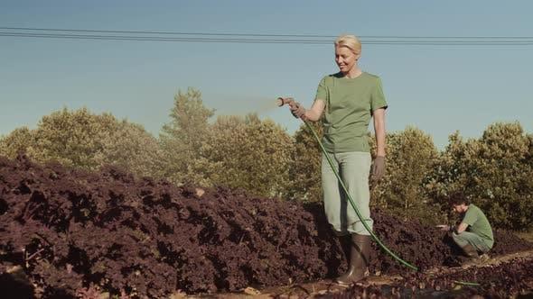 Thumbnail for Female Gardener Watering Plants
