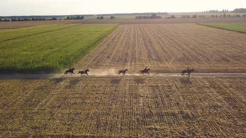 Ukrainian Cossacks Ride Horses on the Field