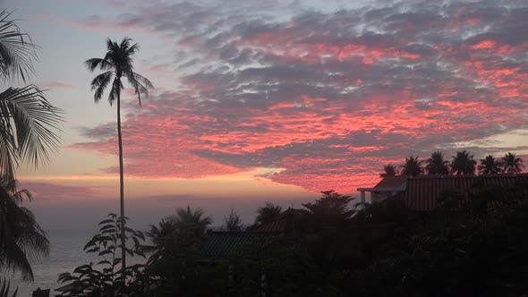 Thumbnail for Sunset In Vietnam