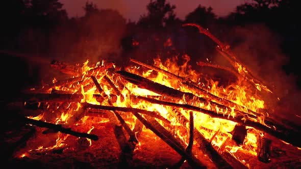 Thumbnail for Big Campfire of the Logs Burns at Night in the Forest. Slow Motion in 180 Fps