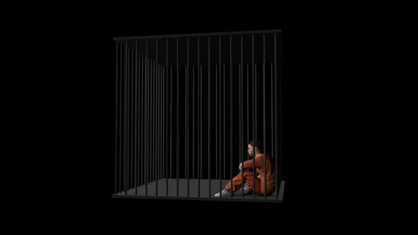 Thumbnail for Prisoner in the Cage