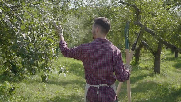 Thumbnail for Professional Bearded Farmer Walking Through the Garden with a Shovel and Pitchfork in Hands