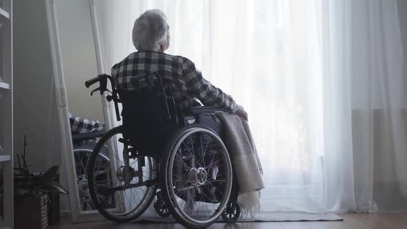 Cover Image for Back View of Old Caucasian Man Sitting in Wheelchair in Front of Big Window Closed with Curtain and