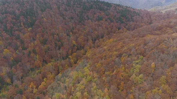 Thumbnail for Mountains and Forests of The Balkan Peninsula During Autumn